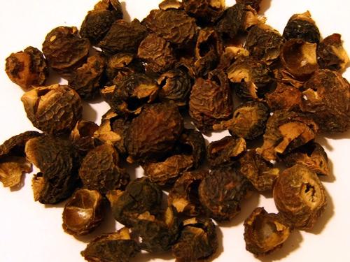 Мыльные ягоды Sapindus Trifoliatus
